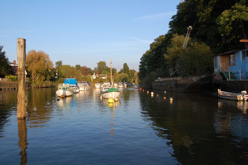 Boats against Eel Pie Island